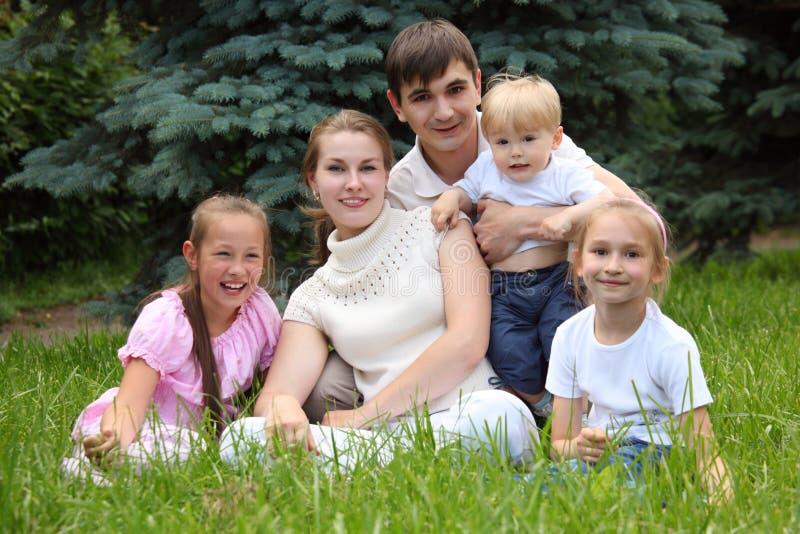 la famiglia cinque erba esterno si siede l'estate fotografie stock