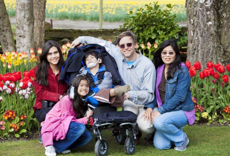 La famiglia con il ragazzo invalido nei tulipani fa il giardinaggio immagini stock libere da diritti