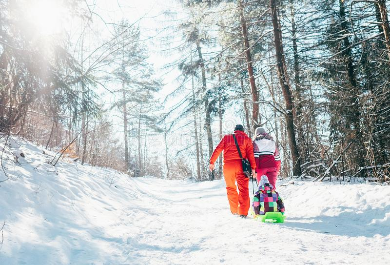 La famiglia ha passeggiata attiva nella tirata della madre e del padre della foresta dell'inverno immagini stock libere da diritti