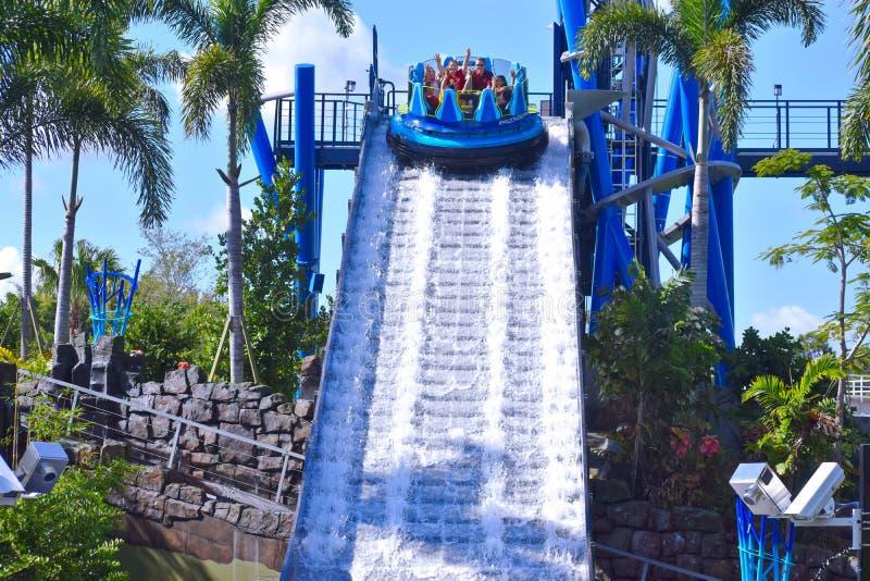 La familia de la diversión disfruta de la pendiente más alta del mundo en atracciones del agua en el parque temático de Seaworld imagenes de archivo