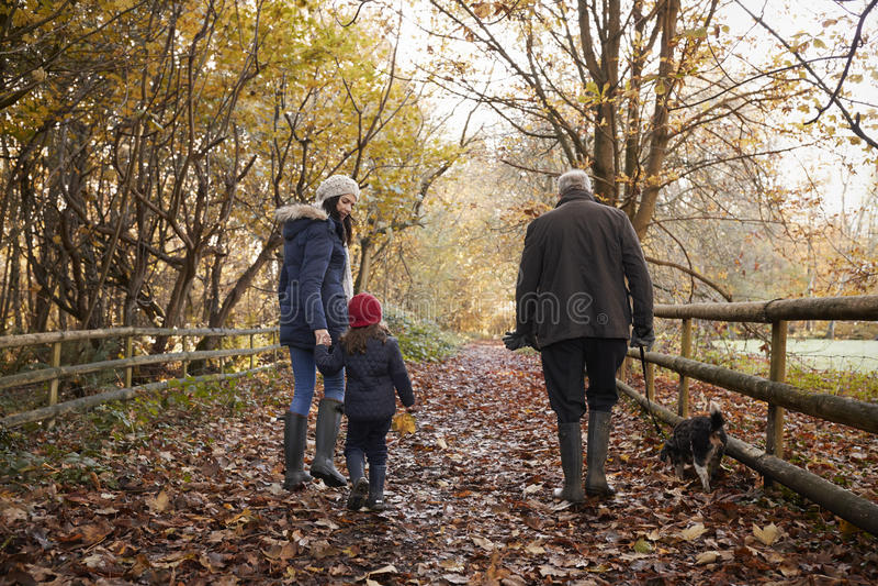 La familia multi de la generación toma el perro para el paseo en paisaje de la caída fotografía de archivo