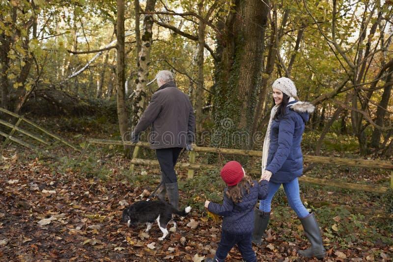 La familia multi de la generación toma el perro para el paseo en paisaje de la caída imagen de archivo