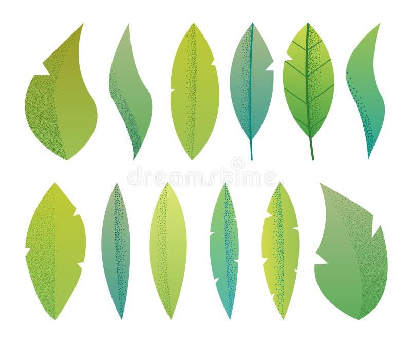 La fantasía plana moderna sale del herbario, plantas, sistema minimalistic de los árboles, diseño texturizado del ejemplo del vec stock de ilustración