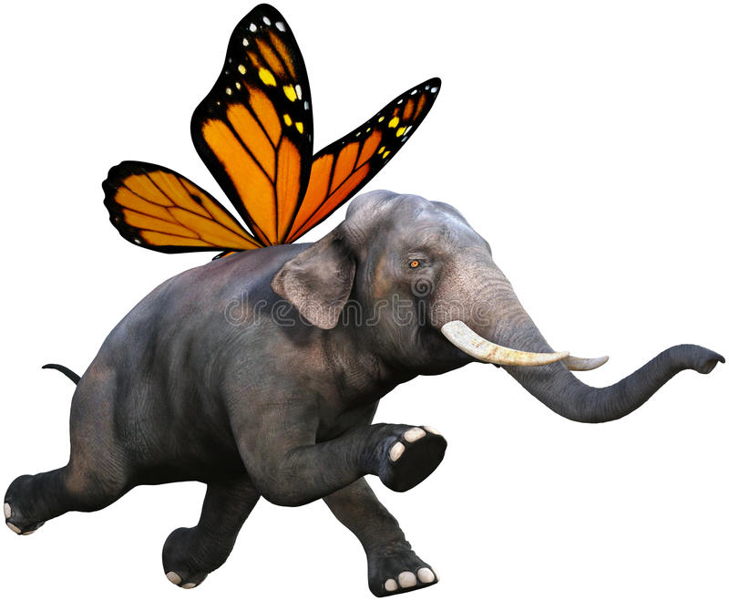 La farfalla di monarca traversa l'elefante volando isolato illustrazione di stock