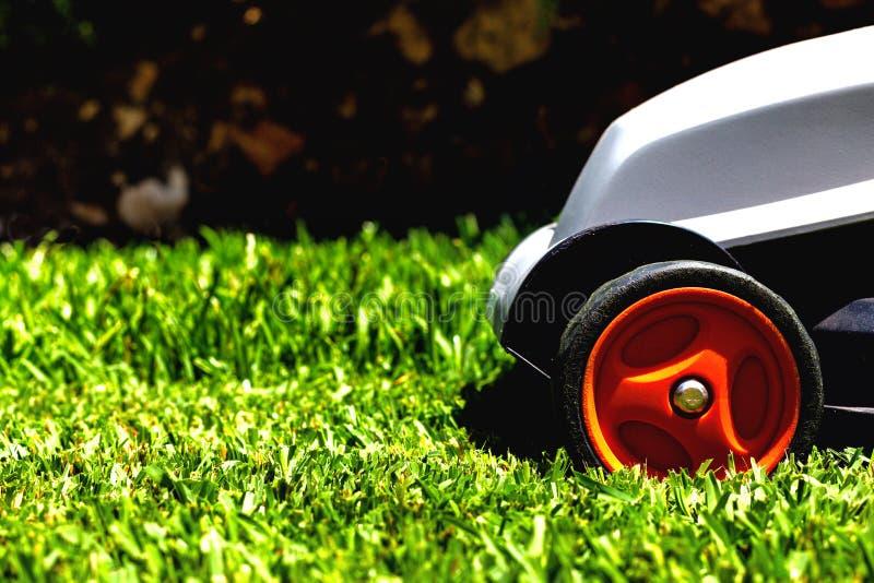 La faucheuse sur une herbe photographie stock libre de droits