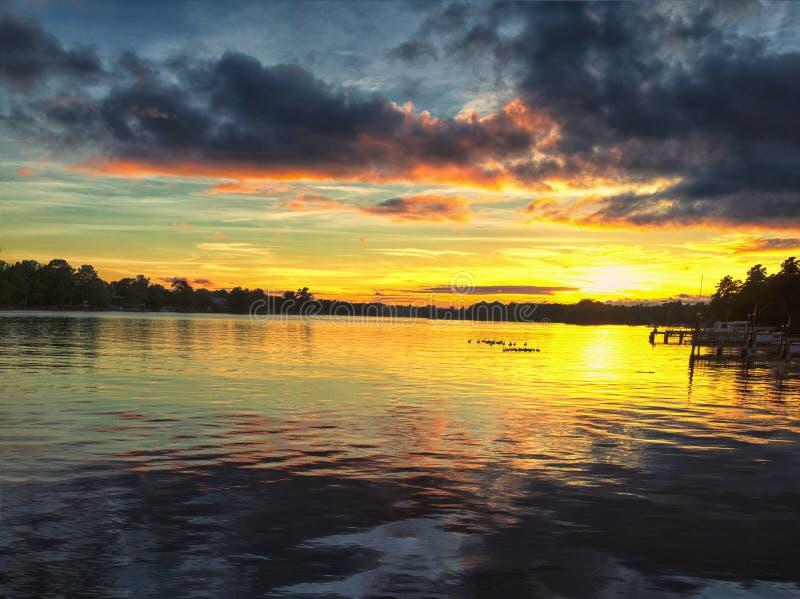 La fauna selvatica sul tramonto del lago fotografia stock libera da diritti