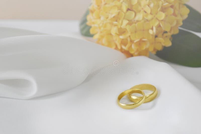 La fede nuziale dell'oro ha un giorno speciale Nei precedenti è il fiore della sfuocatura e lo spazio vuoto per testo immagine stock libera da diritti