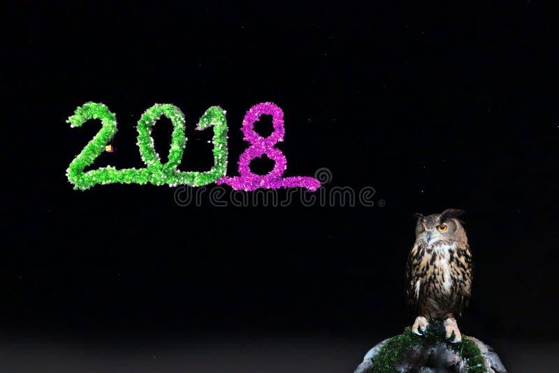 La Feliz Año Nuevo 2018, búho se encaramó en rama mostrada con la estrella en el ni fotografía de archivo libre de regalías