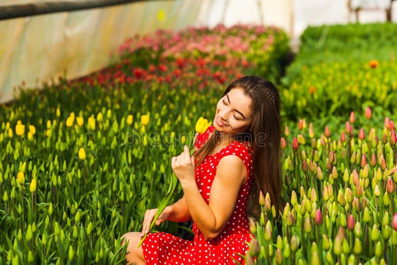 La femme achète les tulipes photo libre de droits