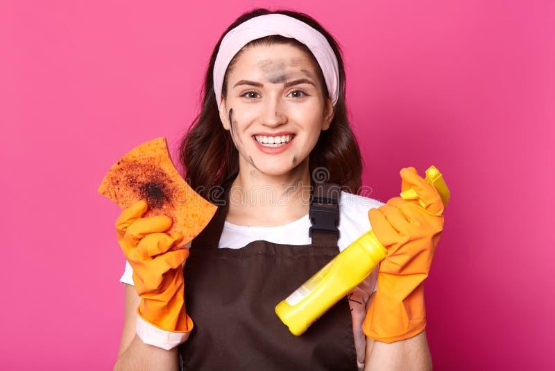 La femme au foyer de sourire enthousiaste juge l'éponge sale et le détergent de nettoyage, satisfaits du résultat du nettoyage, é photo stock