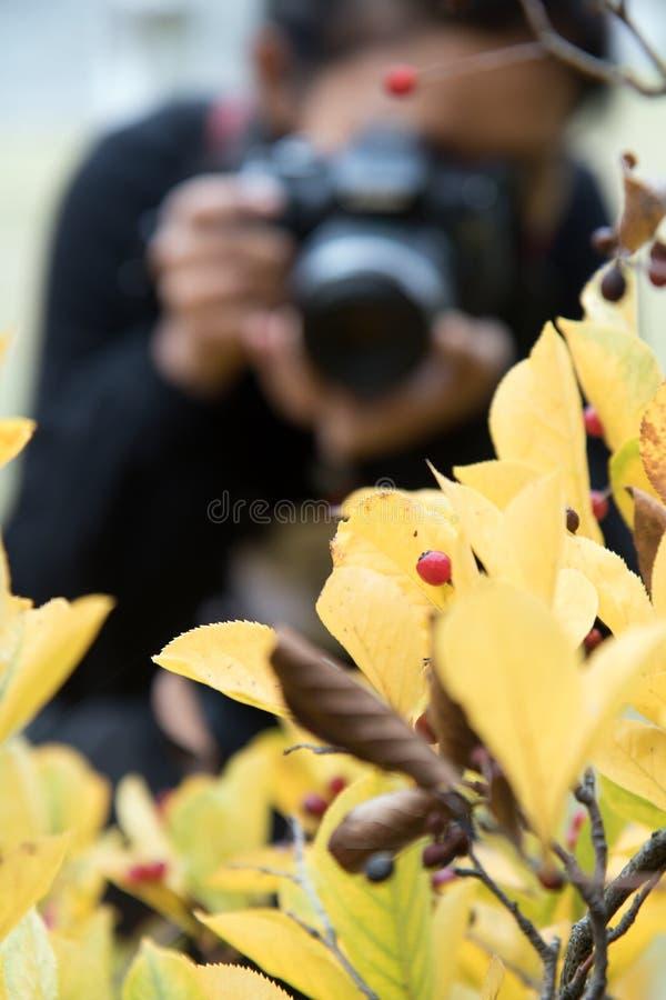 La femme avec la caméra prend des photos photos stock