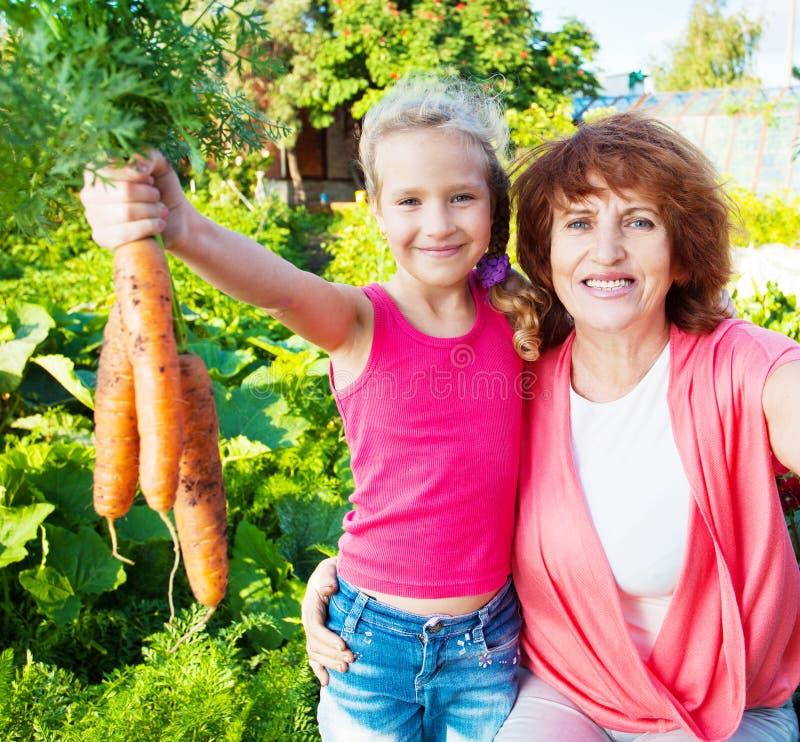 La femme avec l'enfant élève la récolte dans le jardin photo libre de droits