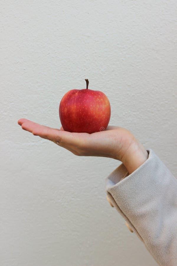La femme dans un manteau tient une pomme savoureuse rouge photographie stock