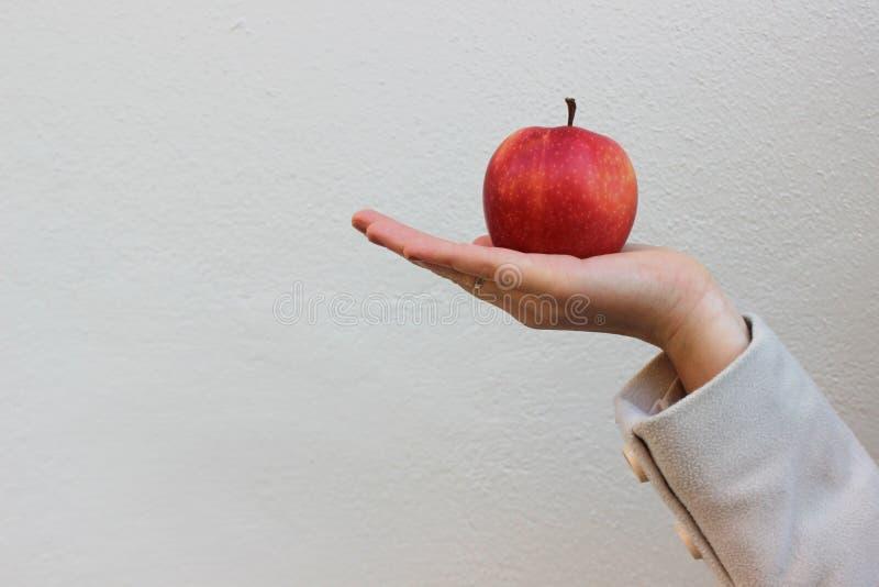 La femme dans un manteau tient une pomme savoureuse rouge photos stock