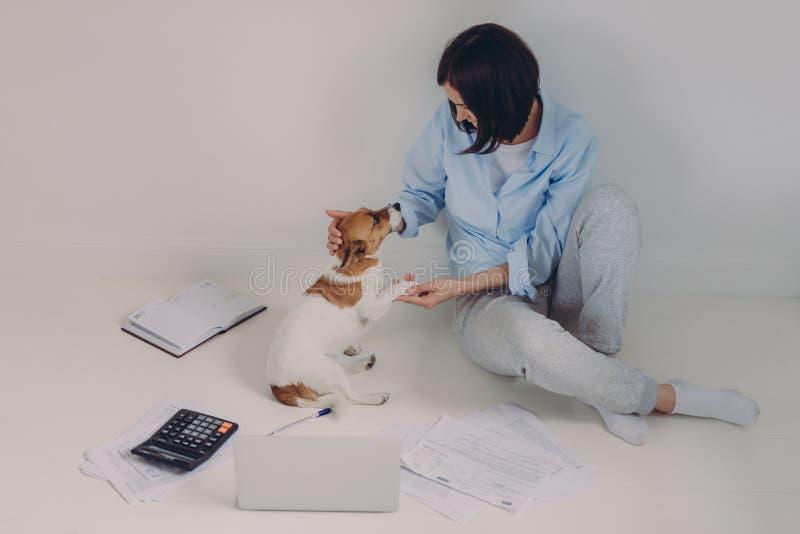 La femme de brune habillée en passant, rapport de revenu d'études, s'assied sur le plancher avec l'ordinateur portable, documents photo libre de droits