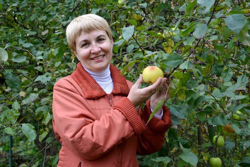 La femme des années moyennes tient la pomme disponible au sujet d'un Apple-arbre photos libres de droits
