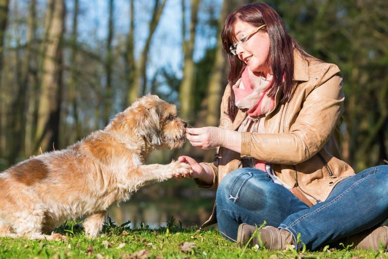La femme donne à chien un festin et obtient la patte image stock