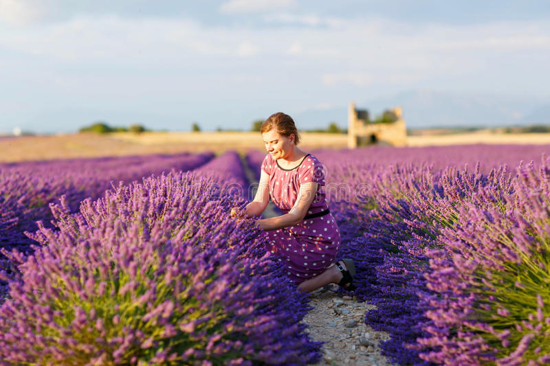 La femme en lavande met en place en Provence, France photo stock