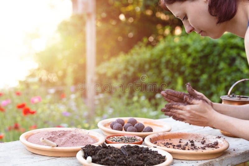 La femme fabrique des boules de graine ou des bombes de graine sur une table en bois photos libres de droits