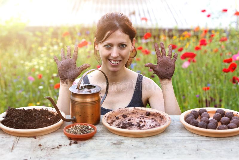 La femme fabrique des boules de graine ou des bombes de graine sur une table en bois photo stock