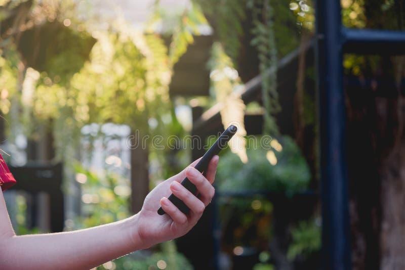 La femme futée de téléphone en main en parc, a employé extérieur mobile photo libre de droits