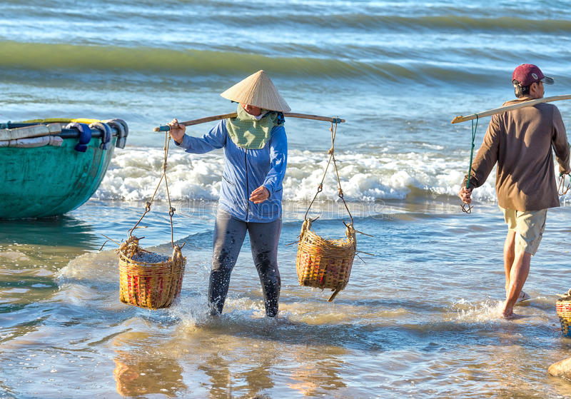 La femme a lutté des anchois continuant la plage image stock