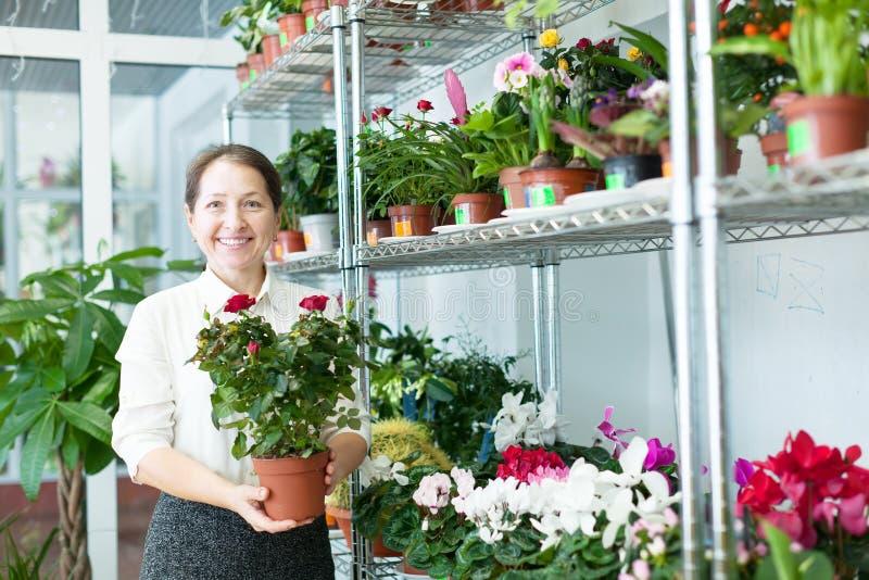 La femme mûre choisit la fleur photographie stock