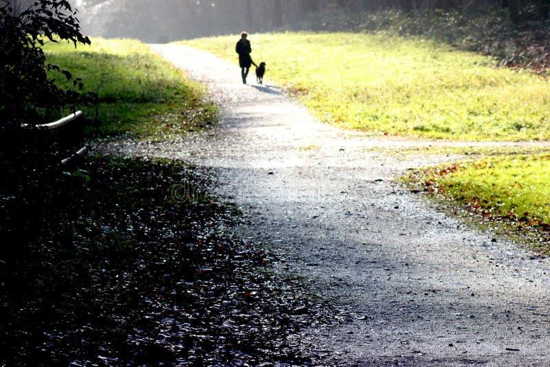 La femme marche avec le chien photographie stock