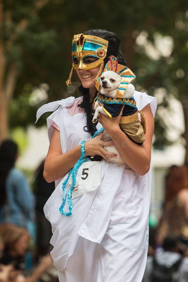 La femme porte le costume de port de pharaon de chien à l'escroquerie de chienchien d'Atlanta image stock
