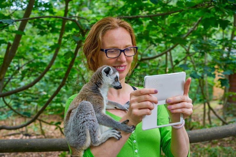 La femme prenant le selfie de photo avec l'anneau a coupé la queue le lémur image stock