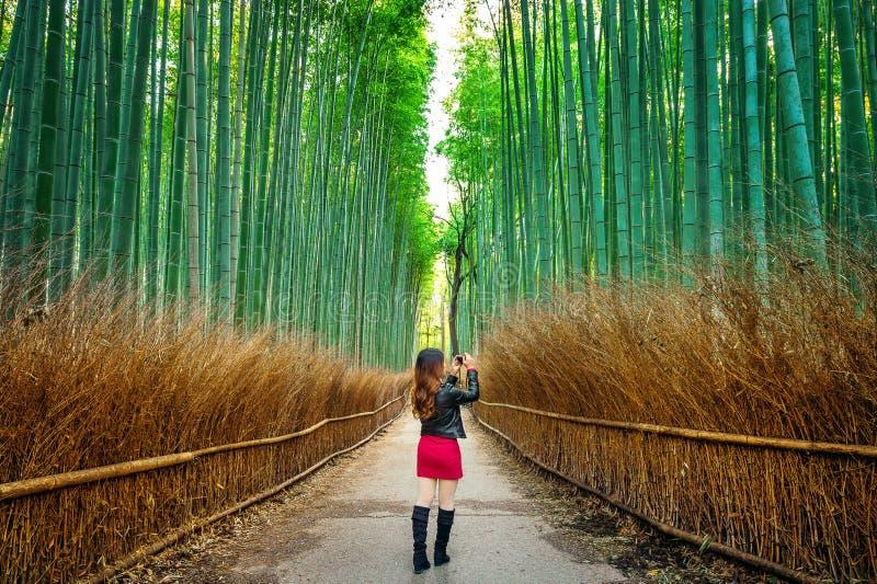 La femme prennent une photo à la forêt en bambou à Kyoto, Japon photos libres de droits