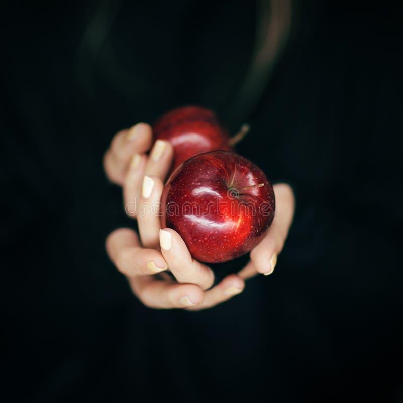 La femme remet tenir quelques pommes rouges, tir sensuel de studio photographie stock libre de droits