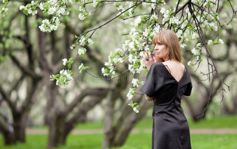 La femme retient un branchement d'une pomme-tre de floraison photos stock