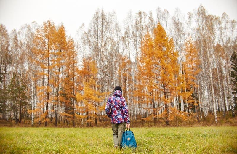 La femme se réjouit à l'arrivée de l'automne La fille dans un domaine près de la forêt jaune d'automne, automne est venue, l'émot image libre de droits