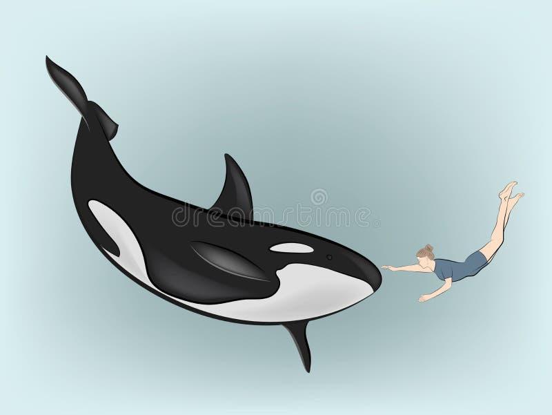 La femme sous l'eau touche l'?paulard Illustration de vecteur illustration stock