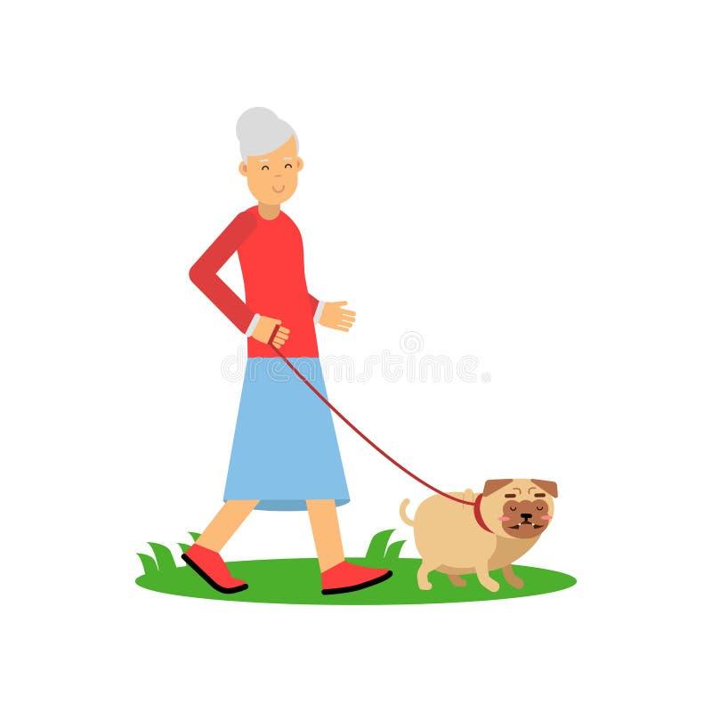 La femme supérieure marchant avec un chien, les loisirs de personnes de retraité et l'activité dirigent l'illustration illustration stock