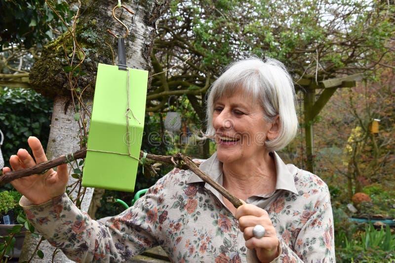 La femme supérieure vérifie la volière dans son jardin image stock