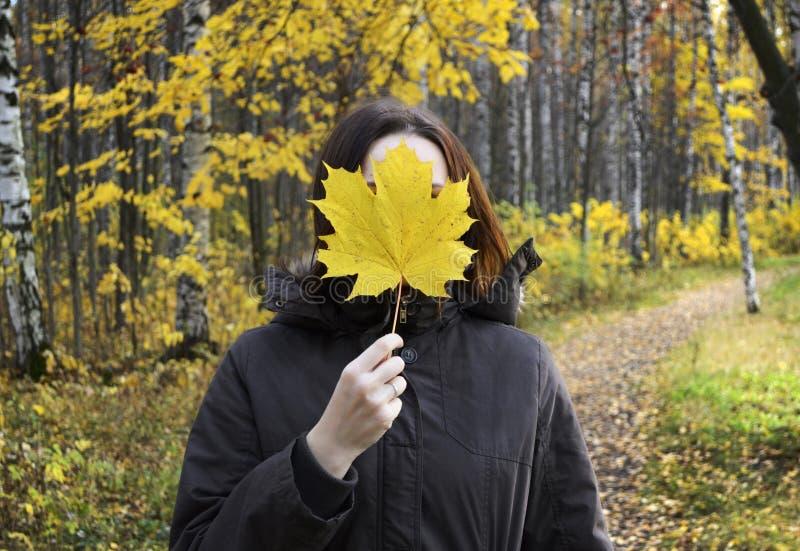 La femme tient la feuille d'érable jaune énorme dans la main, couvrant son fac photos libres de droits