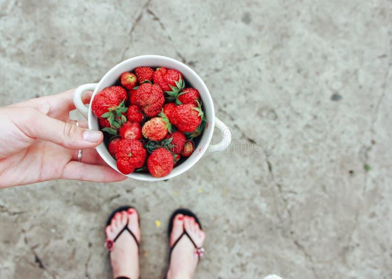 La femme tient le bol en bois disponible de fraises fraîches sur le fond gris photographie stock libre de droits