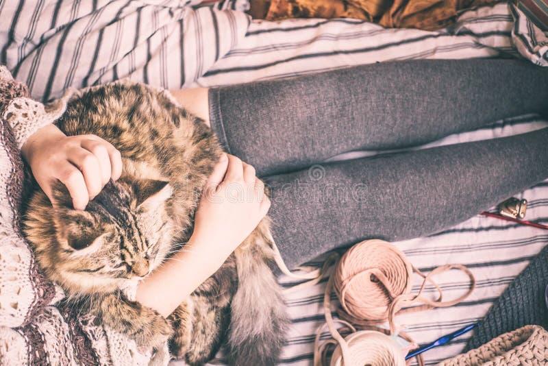 La femme tient le chat image stock
