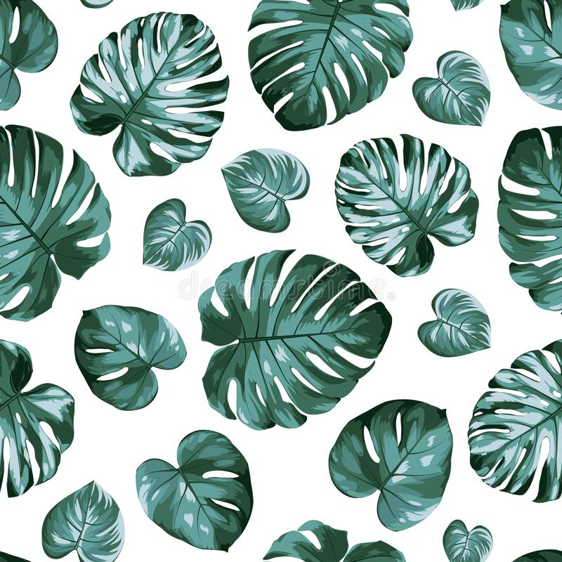La fente de philodendron de Monstera laisse à plante tropicale exotique le modèle sans couture Windowleaf vert-bleu sur le fond b illustration stock