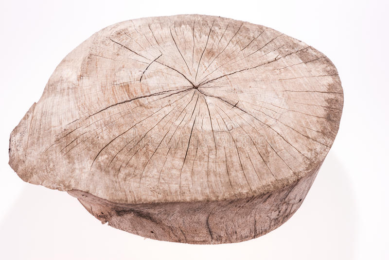 La fetta di legno del ceppo cutted il tronco di albero isolato su bianco fotografia stock