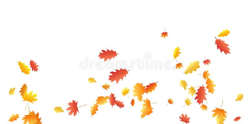 La feuille de chêne et d'érable soustraient le vecteur saisonnier de fond Feuilles d'automne pilotant la conception graphique illustration de vecteur