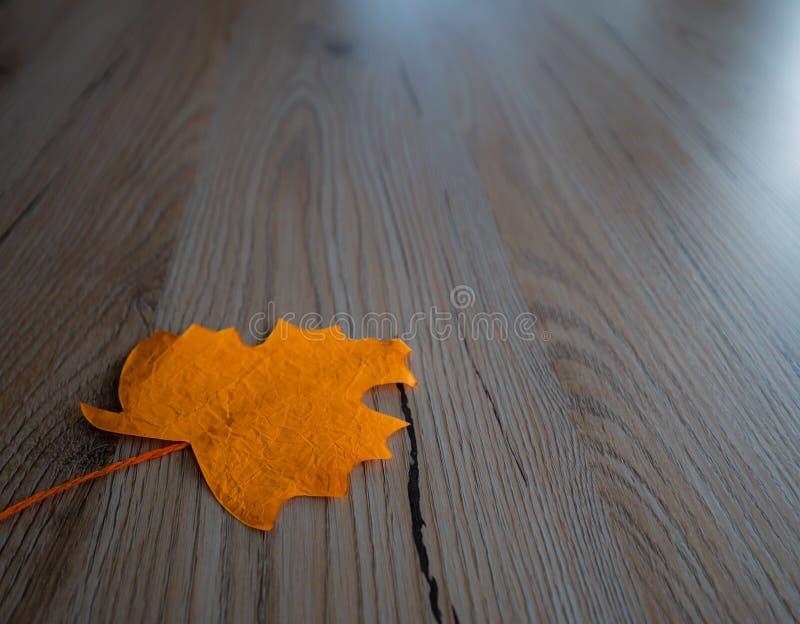La feuille Selfmade ressemble à une feuille d'un arbre photographie stock