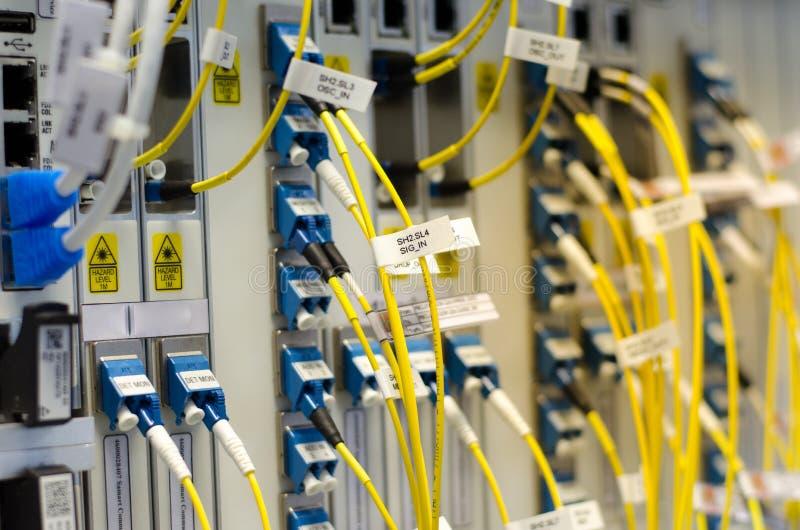 La fibra ottica si collega all'attrezzatura della carta è utilizzata nella telecomunicazione Selezioni il fuoco immagine stock libera da diritti