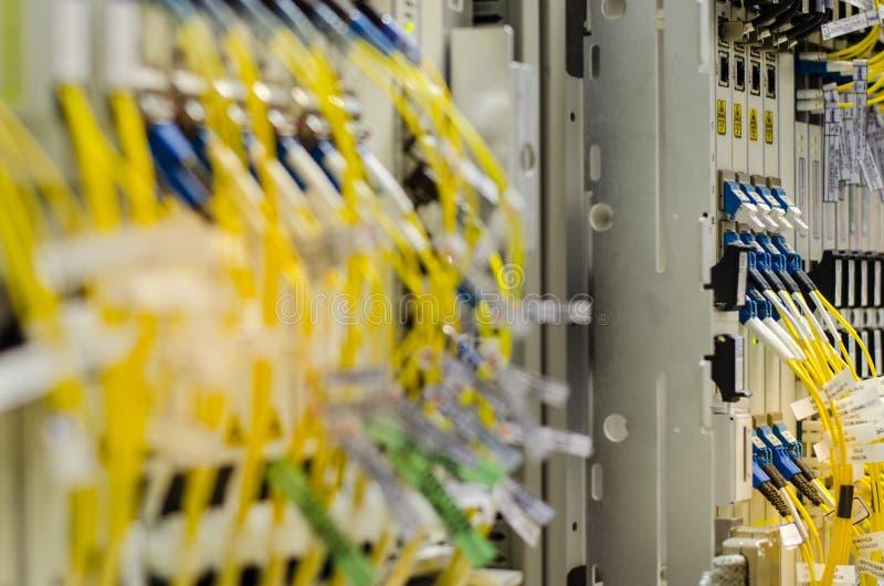 La fibra ottica si collega all'attrezzatura della carta è utilizzata nella telecomunicazione Selezioni il fuoco immagini stock