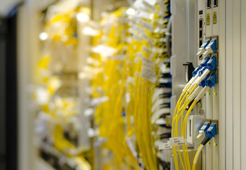 La fibra ottica si collega all'attrezzatura della carta è utilizzata nella telecomunicazione Selezioni il fuoco fotografie stock libere da diritti