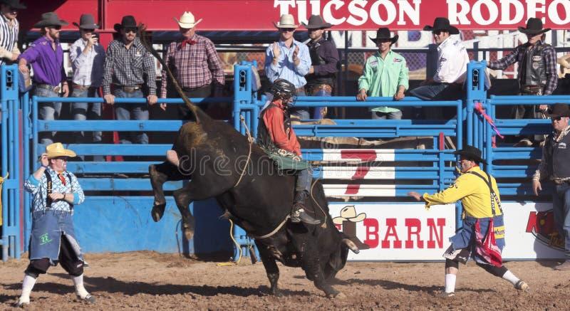 La Fiesta De Los Vaqueros,图森,亚利桑那 图库摄影