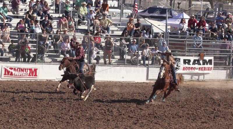 La Fiesta DE Los Vaqueros, Tucson, Arizona stock foto's