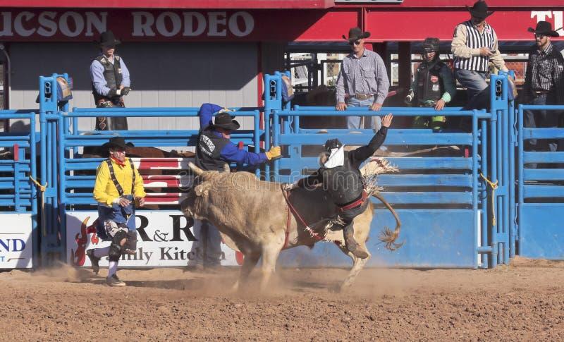 La Fiesta DE Los Vaqueros, Tucson, Arizona stock afbeeldingen